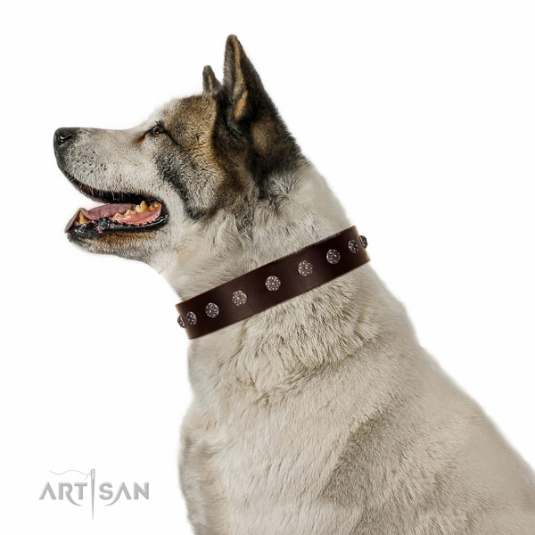 Best quality FDT Artisan brown Akita-Inu collar for