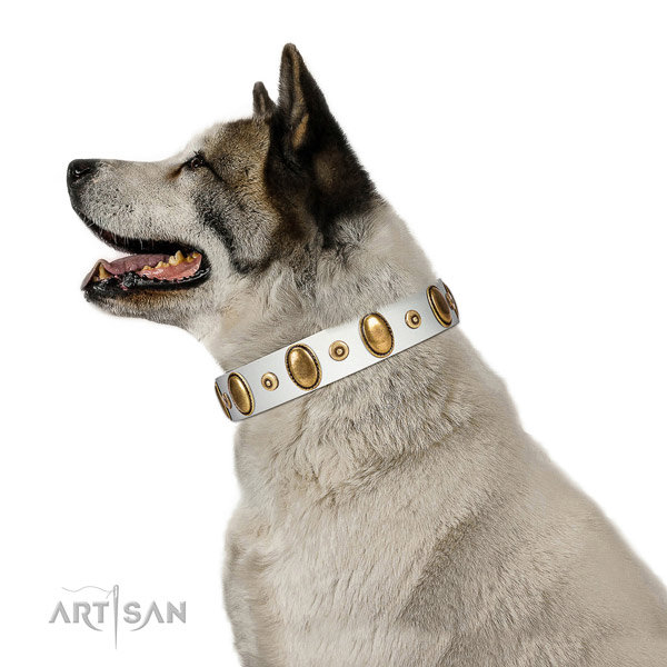 White Leather Akita Inu Collar Is a Tremendous Accessory