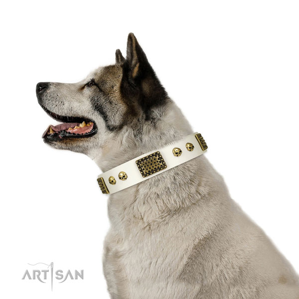 Akita Inu daily use dog collar of exquisite quality genuine leather