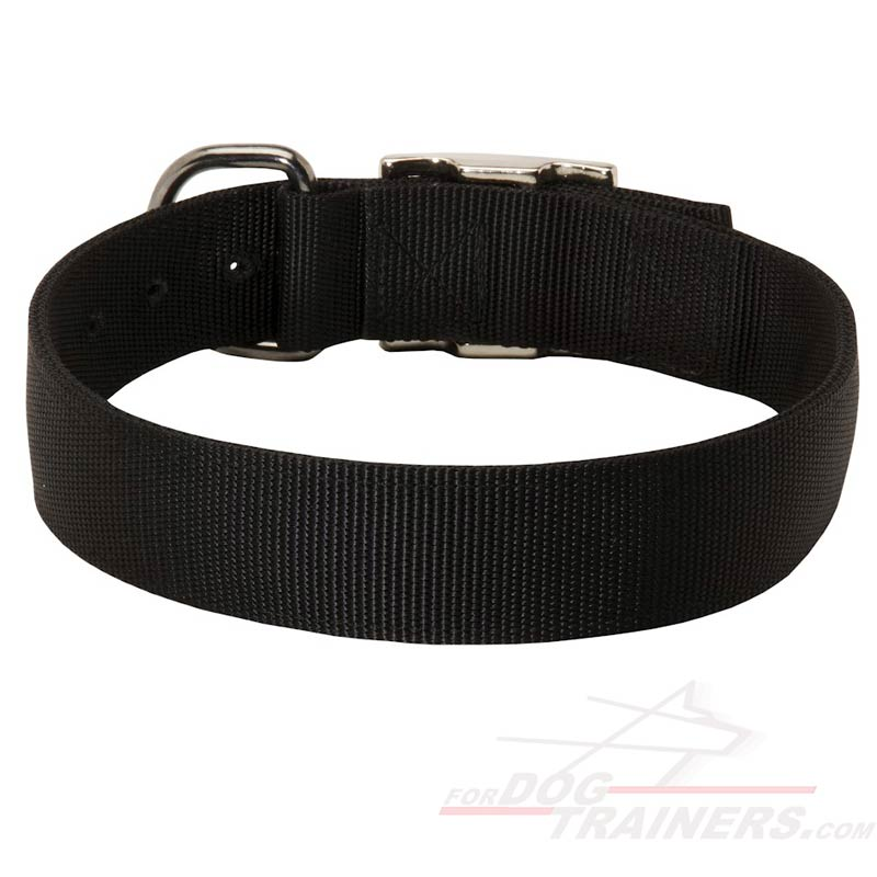 Nylon Buckle Dog Wide Collars