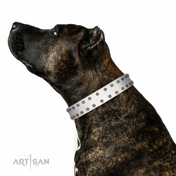 Extraordinary walking white leather Amsatff collar with chic decorations