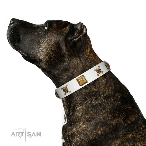 Totally safe Amstaff Artisan tan leather collar