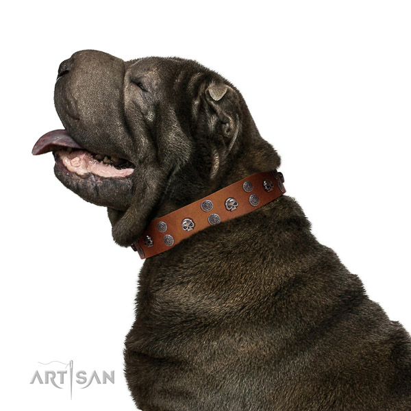 Tan Leather Shar Pei Collar with Riveted Medallions