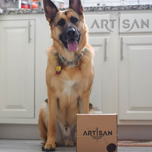 This is how looks the box with leather dog collar