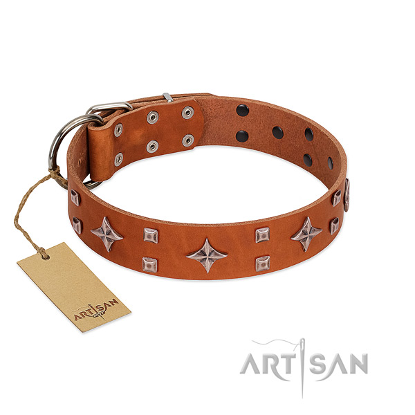 FDT Artisan tan leather dog collar to please refined taste