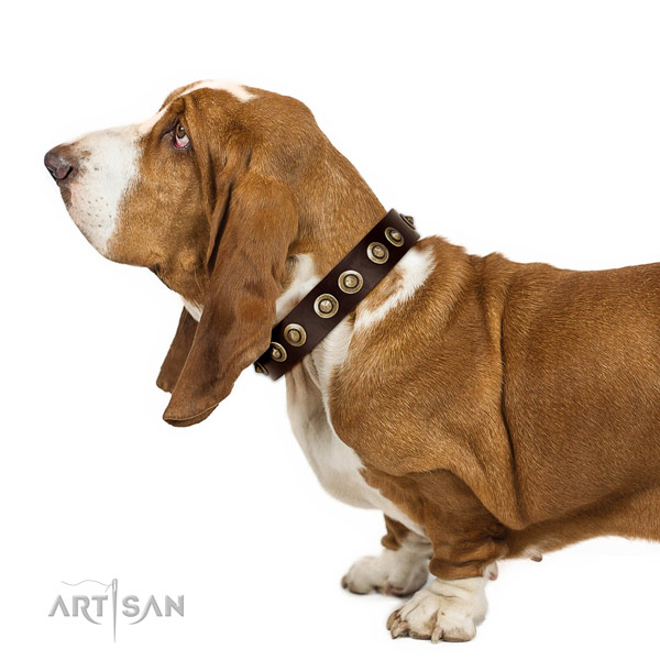 Practical leather Basset Hound collar for daily walking