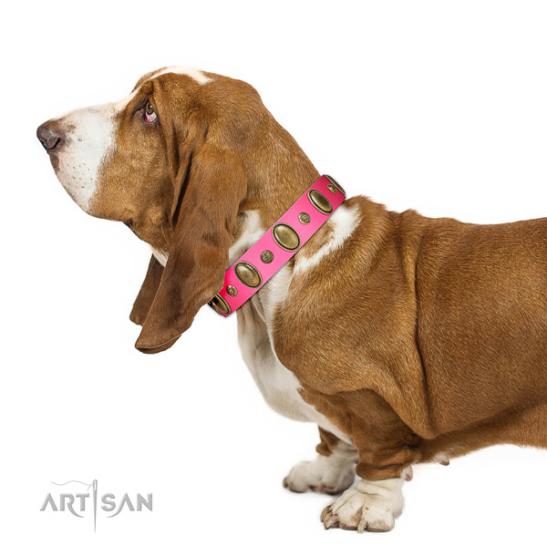 Soft leather Basset Hound collar for walking