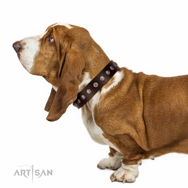 Fabulous brown leather Basset Hound collar with nice decorations