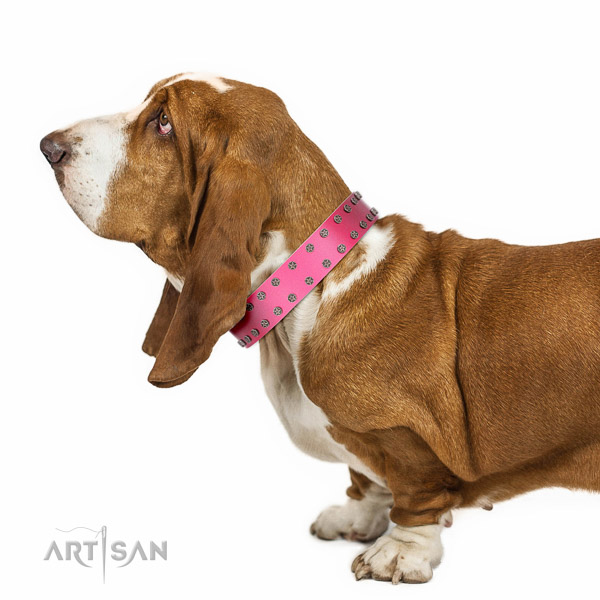 Walking top-notch quality walking leather Basset-Hound