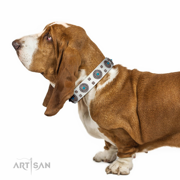Pleasant to wear white leather Basset Hound collar