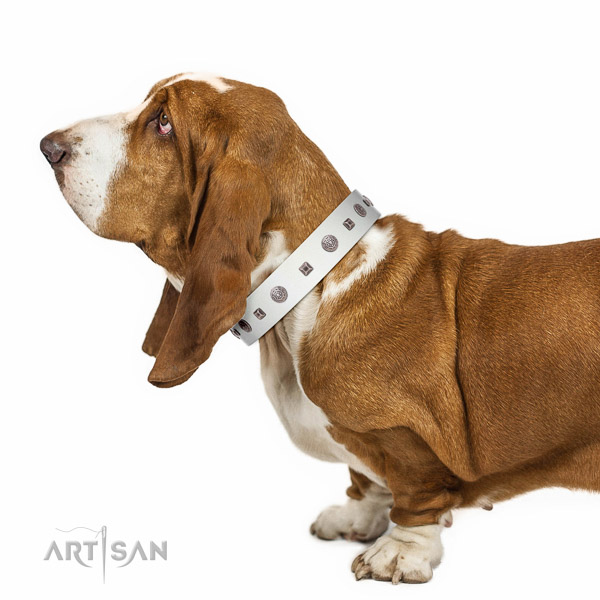 Extraordinary walking white leather Basset Hound collar with chic decorations