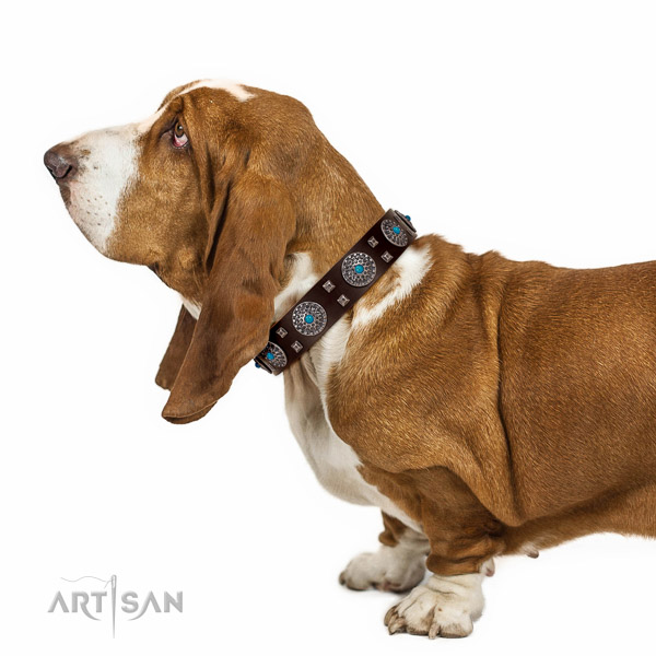 Exquisite full grain leather Basset Hound collar with adornments