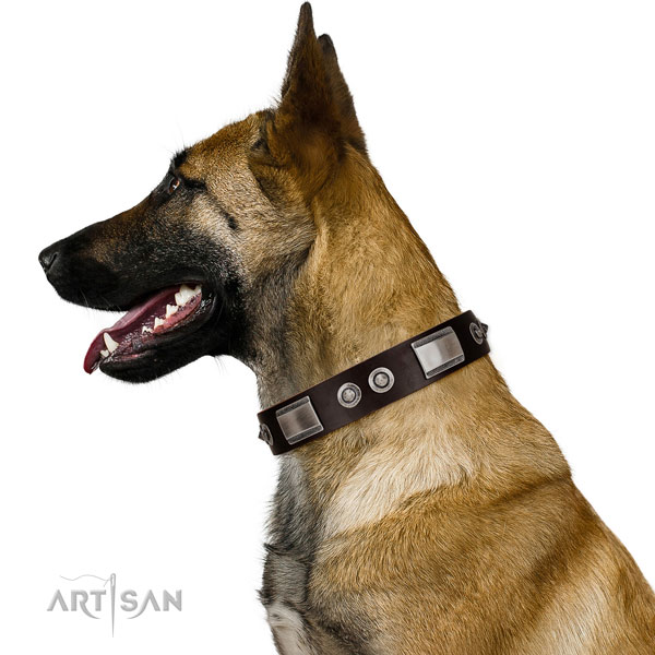 Comfortable leather Belgian Malinois collar
