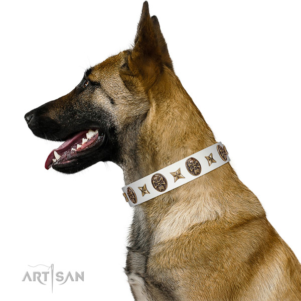 White Leather Belgian Malinois Collar with Handset Conchos and Stars