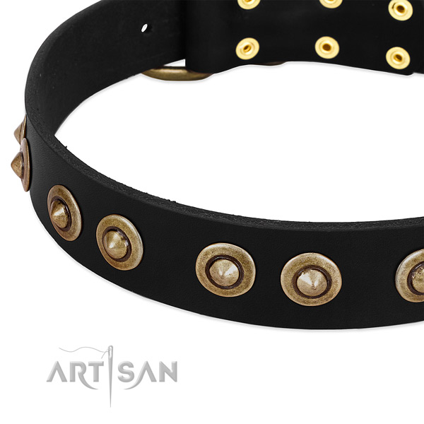 Old Bronze-plated Medallions on Black Leather Dog Collar from FDT Artisan
