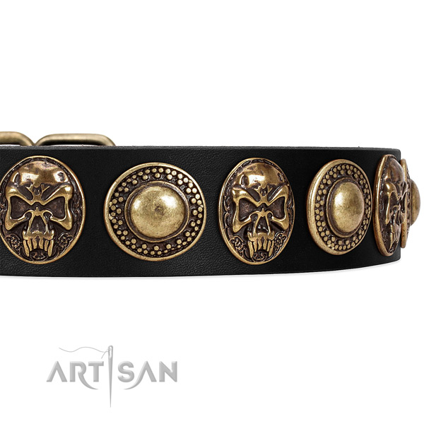 Fancy Walking Black Leather Dog Collar with Conchos and Medallions