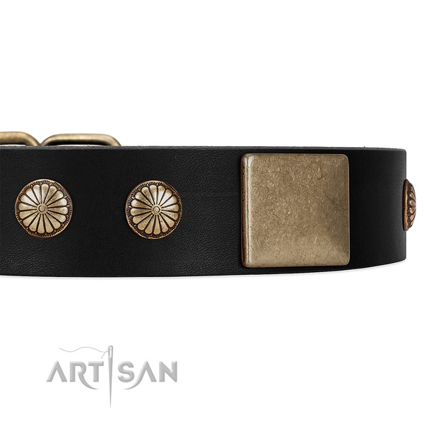 Black Dog Collar with Old-bronze Plated Decor