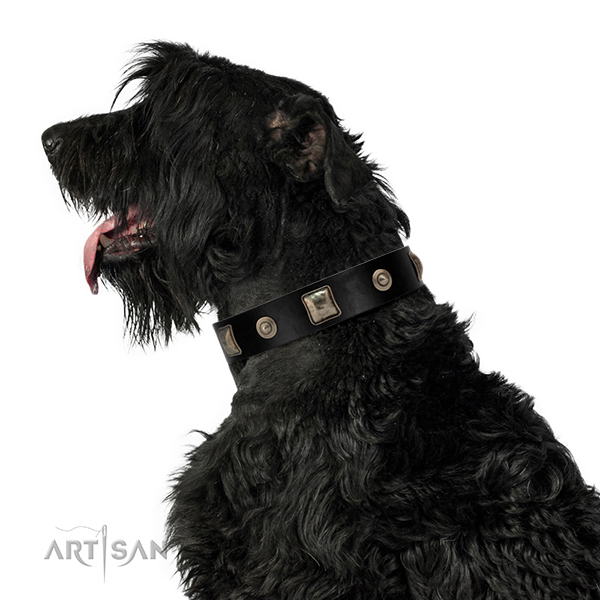 FDT Artisan leather dog collar for your walks
