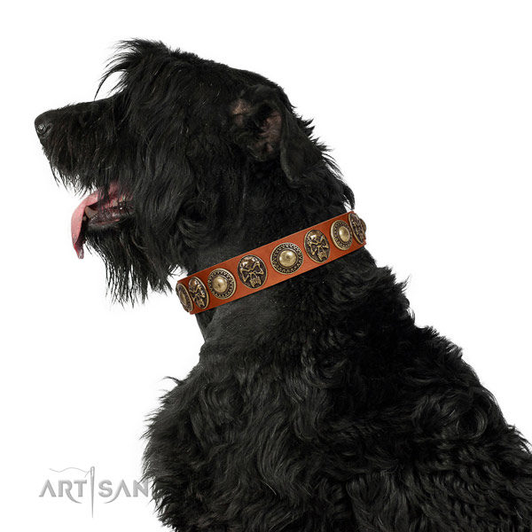 Black Russian Terrier Genuine Leather Dog Collar with Riveted Decorations