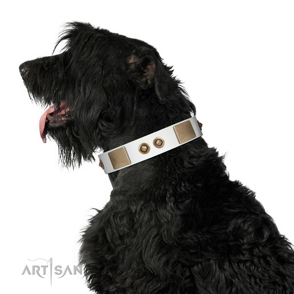Full Grain Leather Black Russian Terrier Collar with Plates and Circles