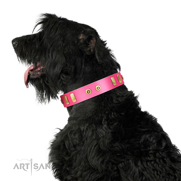 Extraordinary walking leather Black Russian Terrier collar