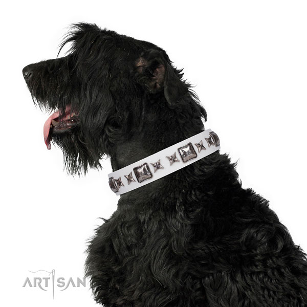Black Russian Terrier exquisite natural genuine leather dog collar with embellishments
