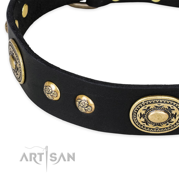 Black leather dog collar for dressy outfit