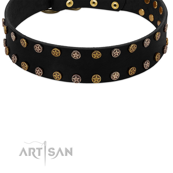 Luxurious Star Studs - Stylish Accent on Black Leather Dog Collar