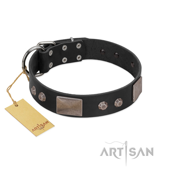 Reliable FDT Artisan leather dog collar
