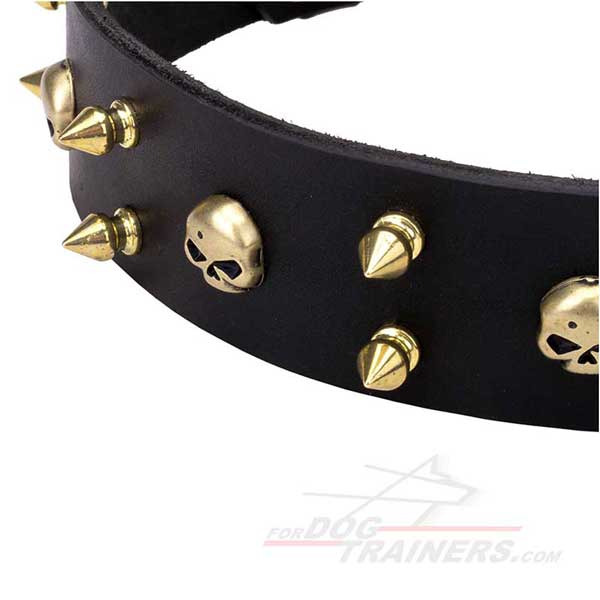 Stylish decorated spikes and skulls collar