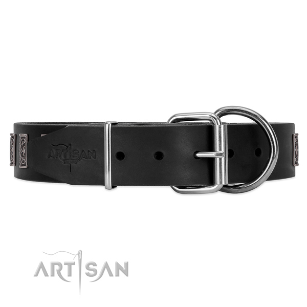 Leather dog collar with chrome-plated hardware