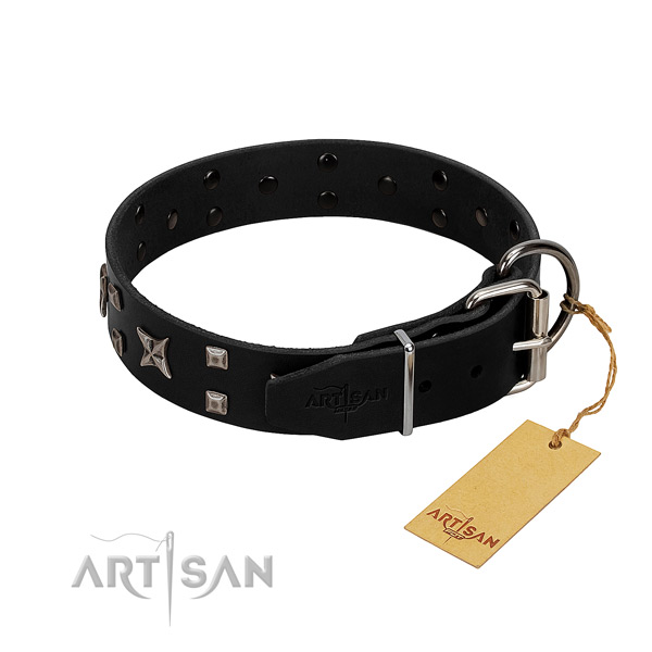 Comfortable to wear leather dog collar for everyday wear