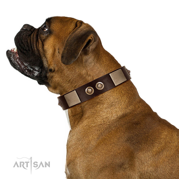 Safe leather Boxer collar without harmful elements