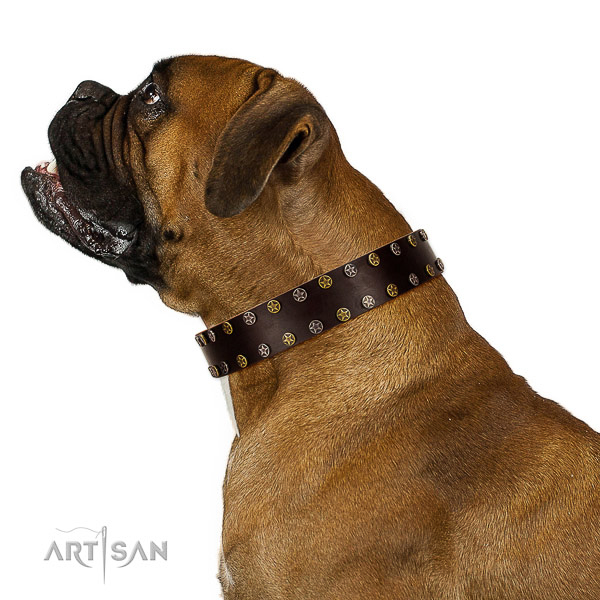 Artisan leather Boxer collar for perfect control
