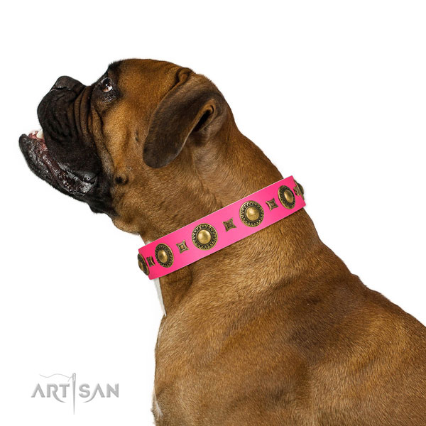 Extraordinary walking pink leather Boxer collar with chic decorations