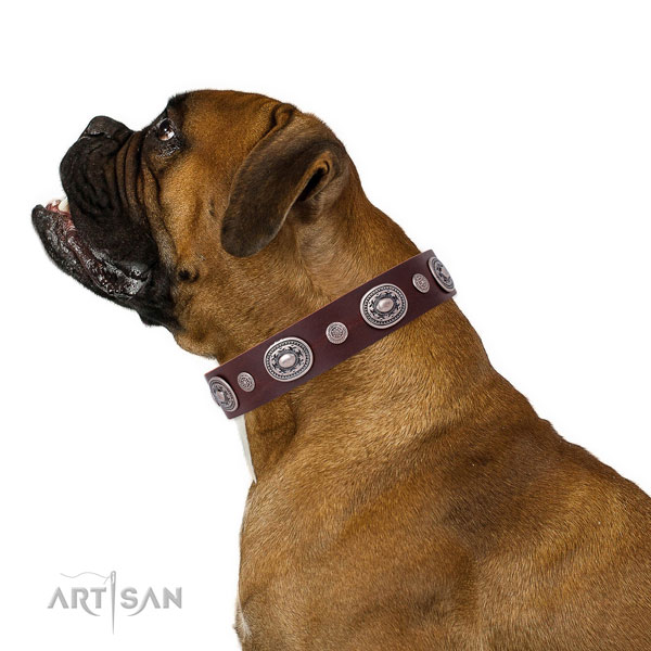 Boxer adorned leather dog collar with studs
