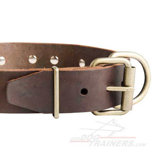 Durable Brass Buckle on Designer Leather Cane Corso Collar