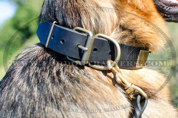 Brass D-ring on Leather Decorated German Shepherd Collar