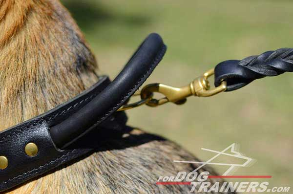 Brass D-ring on Protection Training German Shepherd Leather Collar