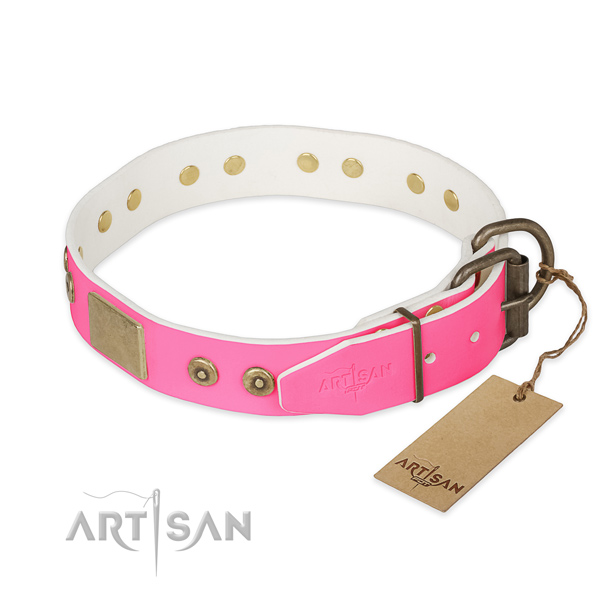 Brass Decorative Parts on Pink Dog Collar
