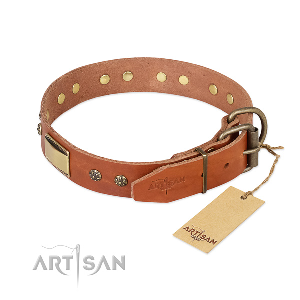 Brass Decorative Parts on Tan Dog Collar