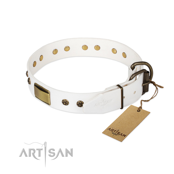 Brass Decorative Parts on White Dog Collar