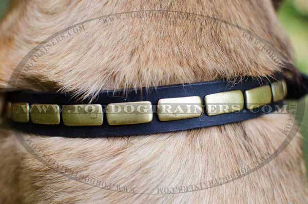 Design Brass Plates on Dog Collar Leather