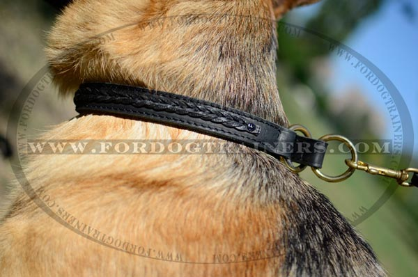Brass Rings on Choke Dog Collar