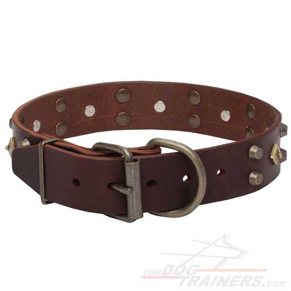 Buckled Leather Dog Collar Easy to Adjust