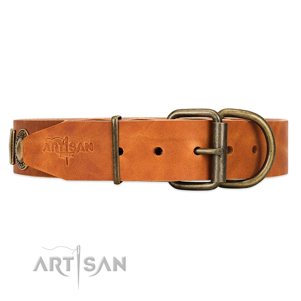 FDT Artisan Leather Dog Collar with Reliable Hardware