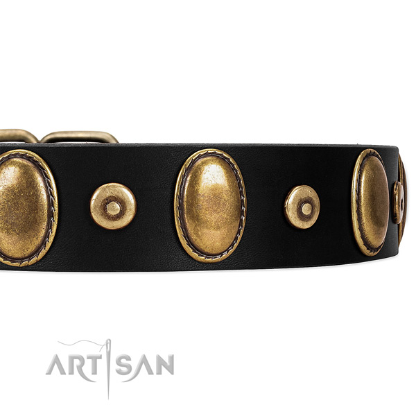 Bronze-Like Plated Medallions and Studs on Black Leather Dog Collar