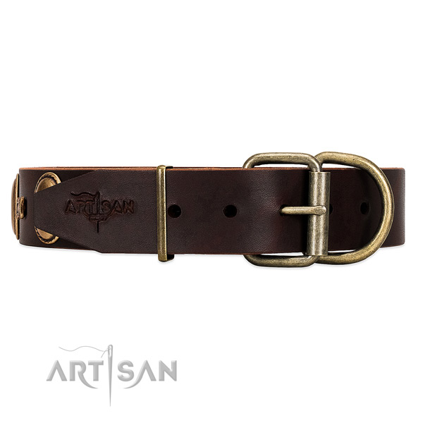 Fancy Leather Dog Collar with Sturdy Fittings with Rust-proof Covering