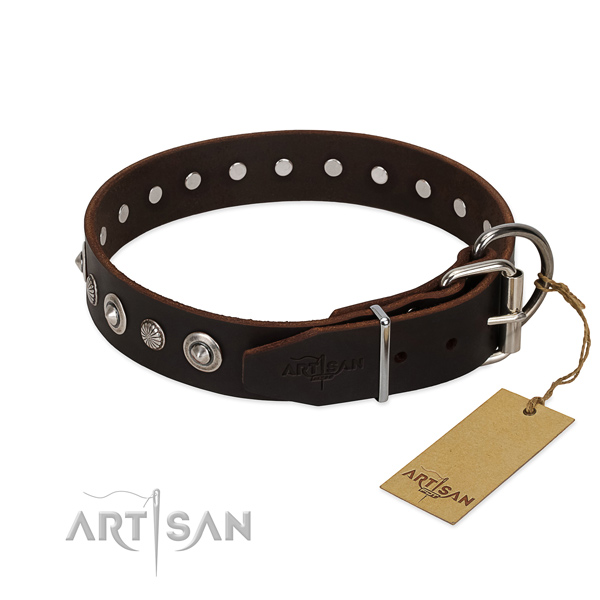 Tan Leather Dog Collar with Riveted Fittings