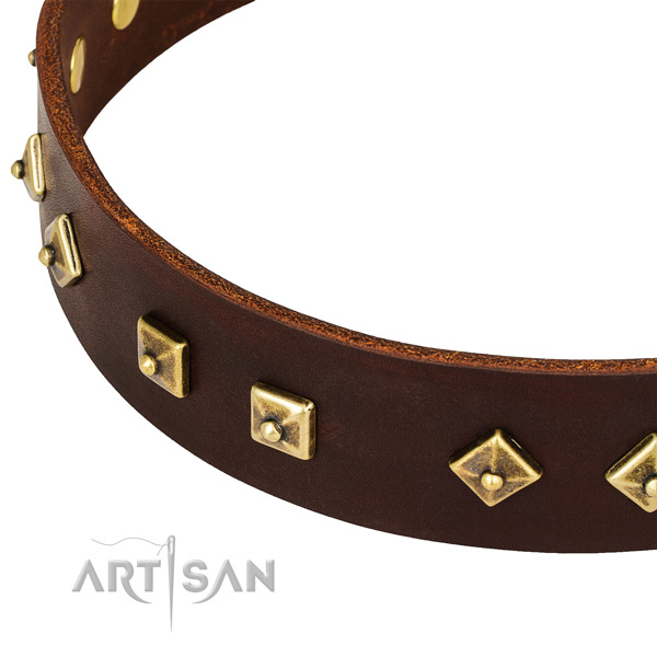 Perfect Fit Brown Leather Dog Collar